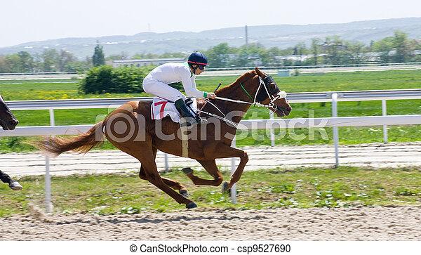 Horse racing - csp9527690