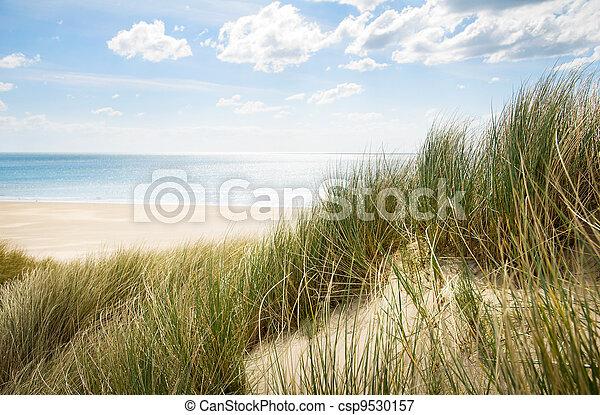 sand dunes - csp9530157