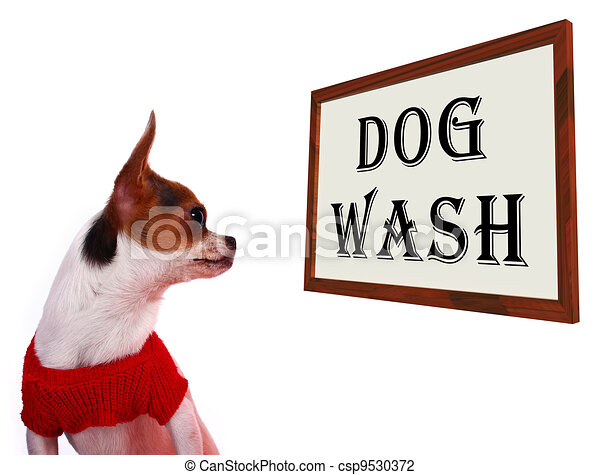 Dog Wash Sign Showing Canine Grooming Washing Or Shampoo - csp9530372