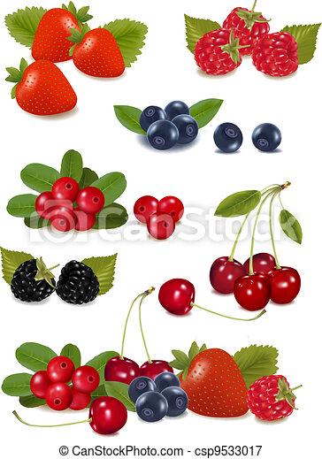Big group of fresh berries. - csp9533017
