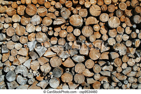 cut tree trunks forming a huge outdoor Woodshed - csp9534460
