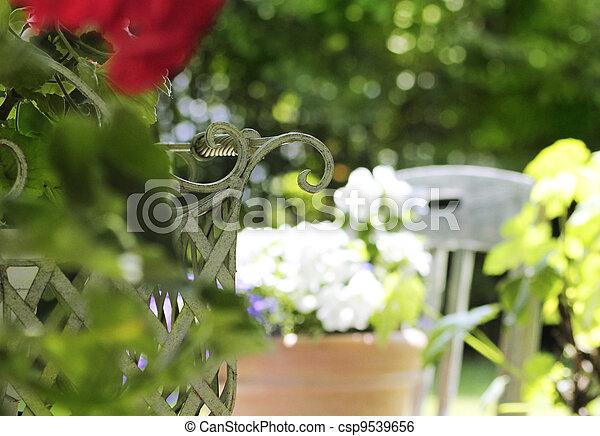 tranquil home garden - csp9539656