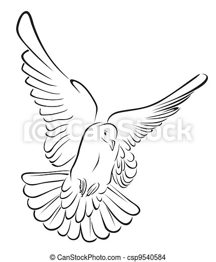 pigeon in brush stroke Vector - csp9540584