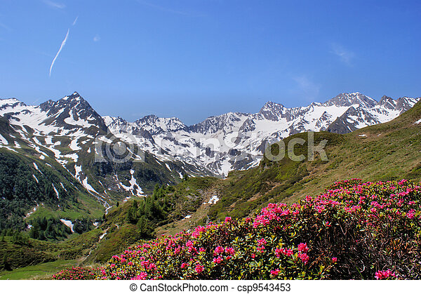 Mountain world in South Tyrol - csp9543453
