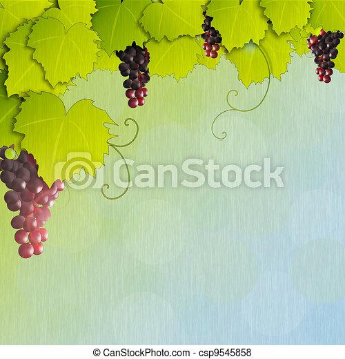 Grapevine - csp9545858