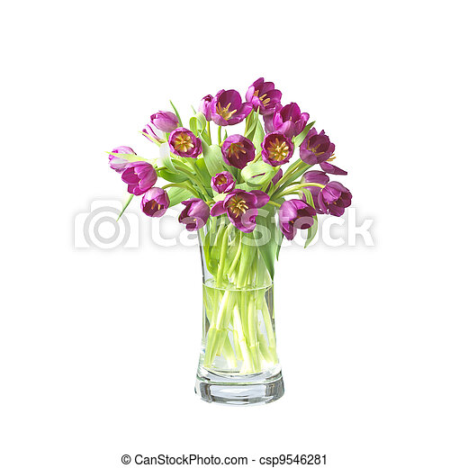 beautifil tulips  flowers in a vase isolated on white with - csp9546281
