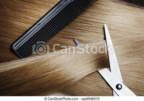 Blond Hair - csp9546416