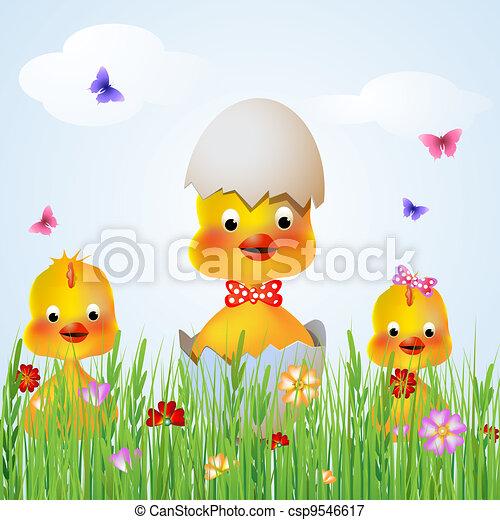 Three chicken hen  - csp9546617