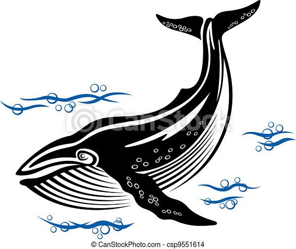 Big whale - csp9551614