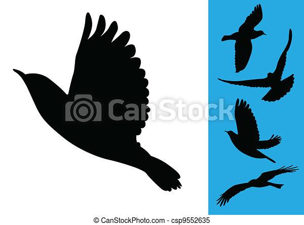 Vecteur clipart de vol vecteur oiseaux birds vol - Dessin oiseau en vol ...
