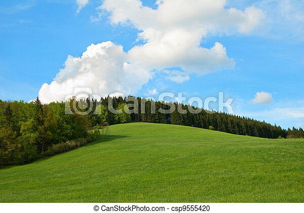 Green Field and forest Hill with blue sky - csp9555420