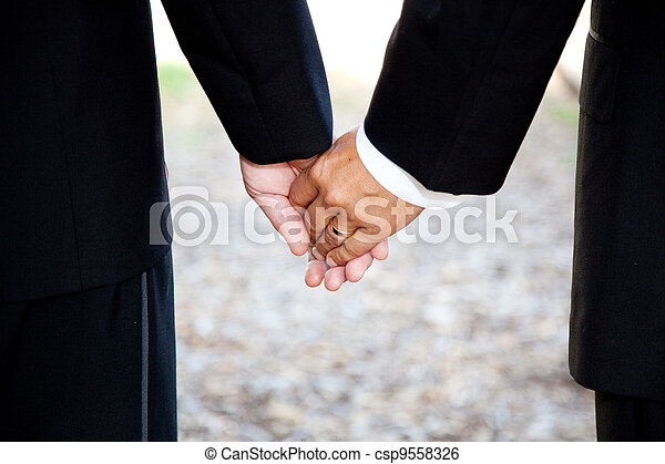 Gay Marriage - Holding Hands Closeup - csp9558326