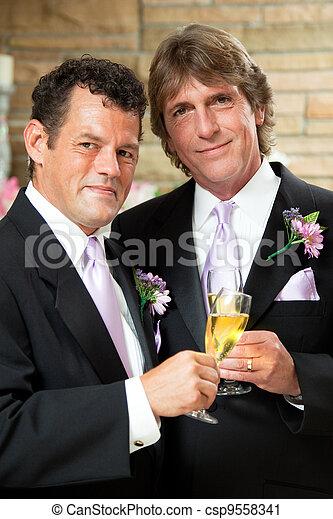 coppia, gaio, ricezione, matrimonio - csp9558341