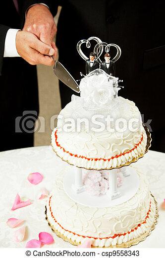 Gay Marriage - Cutting Wedding Cake - csp9558343