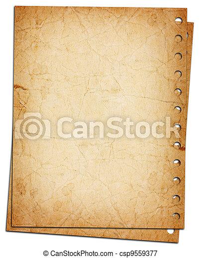 blank sheet of paper - csp9559377