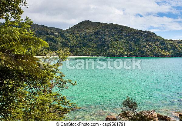 Tranquil bay in Abel Tasman NP, New Zealand - csp9561791