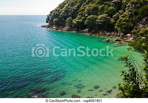 Tranquil bay in Abel Tasman NP, New Zealand - csp9561801