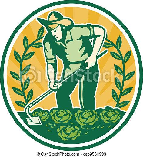 Farmer Gardener With Garden Hoe Cabbage - csp9564333
