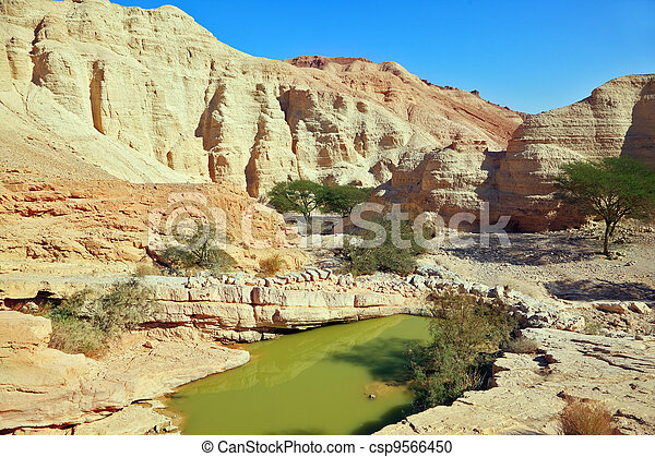 A big pool with the remains of green water - csp9566450