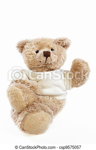 Teddy bear doll - csp9575057
