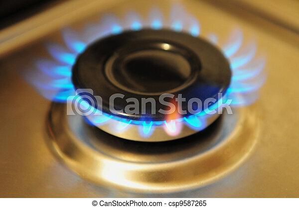 Stainless Steel Gas Burner - csp9587265
