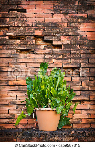 Flowerpot with brick wall background - csp9587815