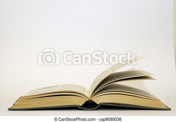 Old Open Book Pages Fanning - csp9589336