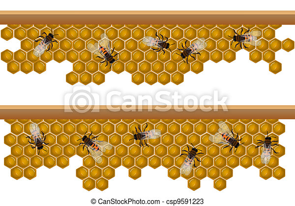 Drawings Of Bee Hive Pattern Design Elements For A Seamless Border Csp9591223 Search