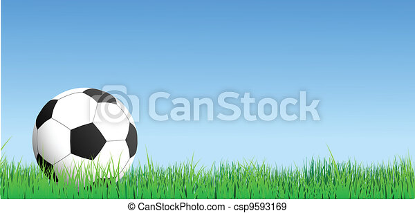 football on grass - csp9593169