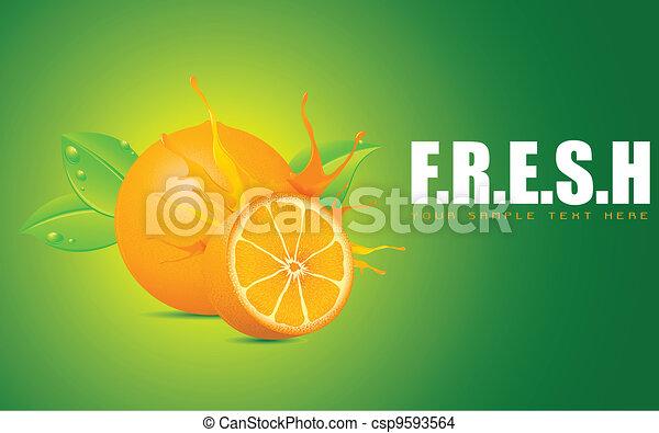 Freshness - csp9593564