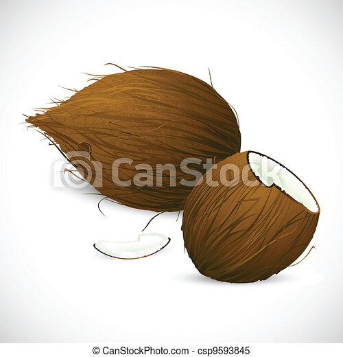 Coconut - csp9593845