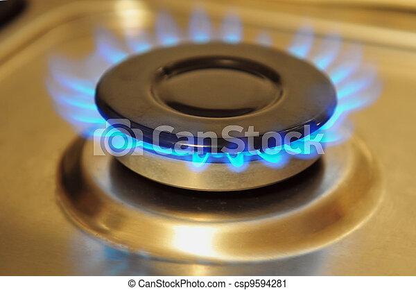 Stainless Steel Gas Burner - csp9594281