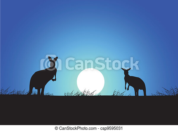 Kangaroo on the sunset background - csp9595031