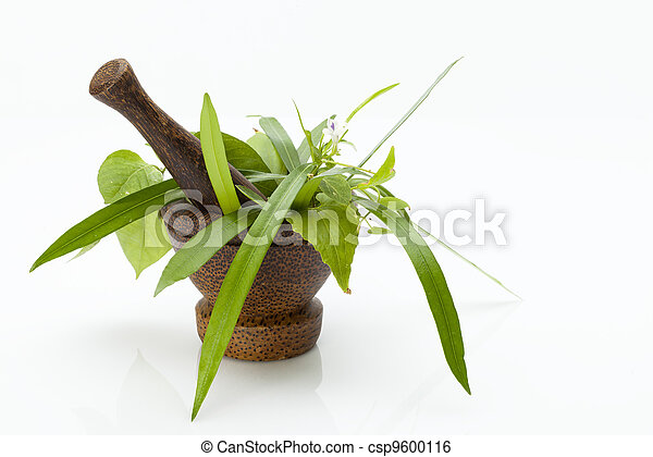 mortar - csp9600116