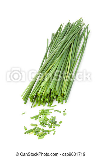 Freshly cut stands of chive - csp9601719