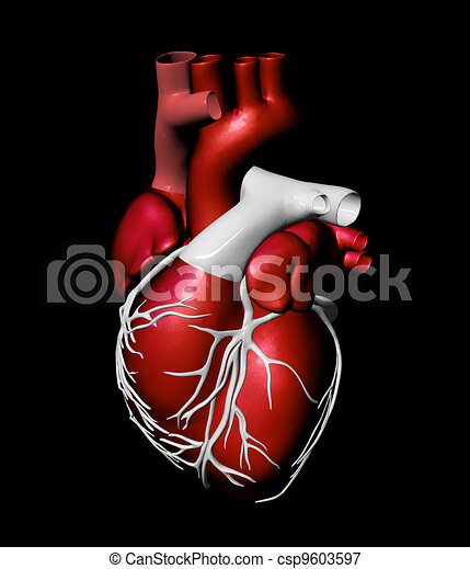 Model of artificial human heart - csp9603597