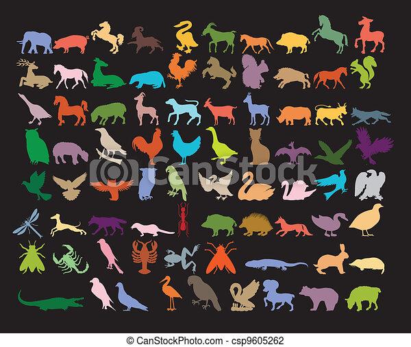 Big variety of animals. - csp9605262