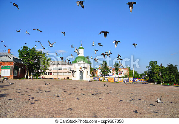 Flock of fying pigeons over the square in front of Lavra, Sergiev Posad, Moscow region, Russia - csp9607058