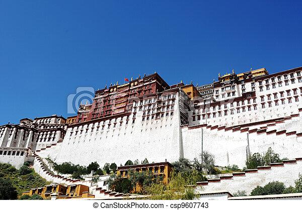 Landmark of the Potala Palace - csp9607743