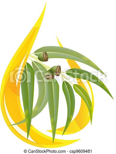 Eucalyptus essential oil - csp9609481