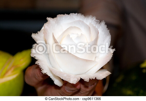 Rose made by carving a turnip - csp9611366