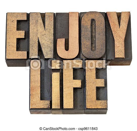enjoy life in wood type - csp9611843