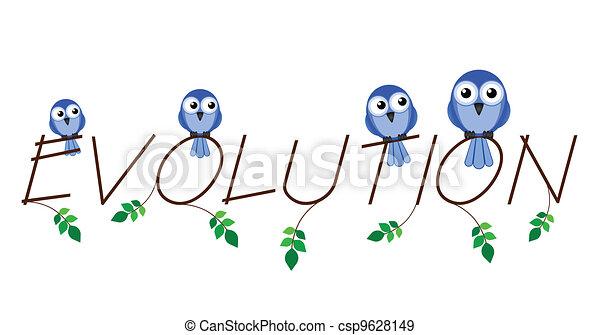 Evolution - csp9628149