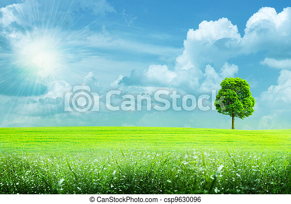abstract summer rural landscape under the blue skies and bright sun - csp9630096
