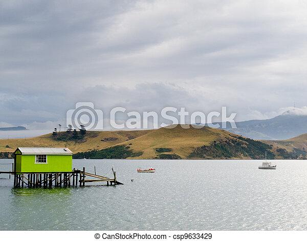 Otago peninsula coastal landscape, Dunedin, NZ - csp9633429