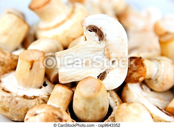 An edible mushroom, especially the much cultivated species Agaricus bisporus. - csp9643352