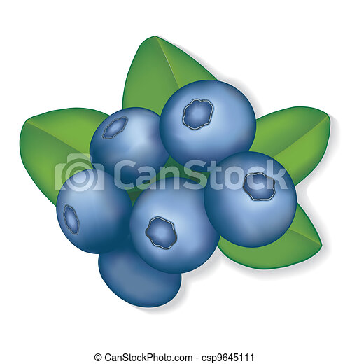 Blueberries - csp9645111