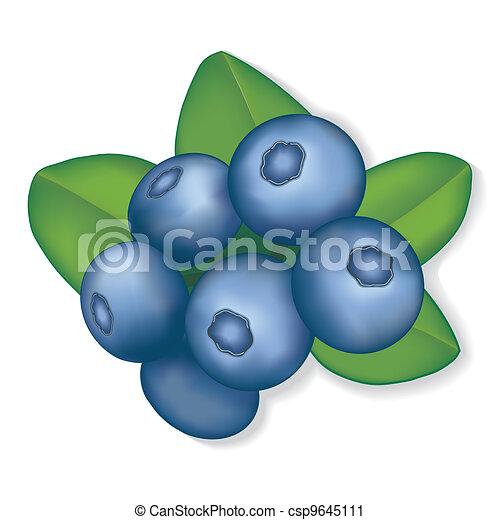 Blueberries - csp9645111