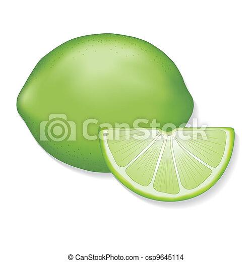 Limes  - csp9645114
