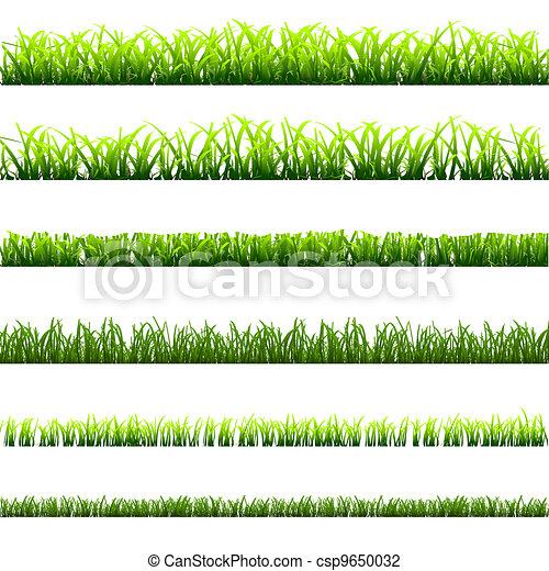 Vector 6 diferente tipos verde pasto o c sped - Tipos de cesped ...
